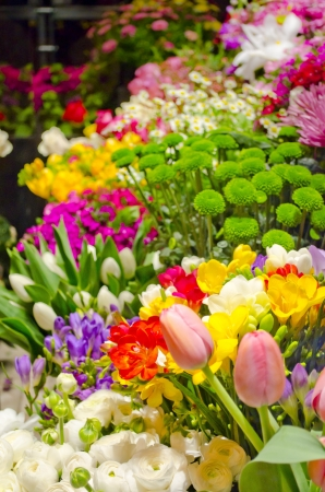 Colorful flower blur postcard background Stock Photo