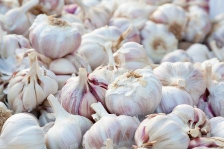 Garlic pattern background in market