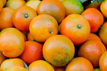 Tangerin background citrus