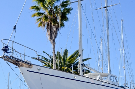 White yacht on blue sky and palms background