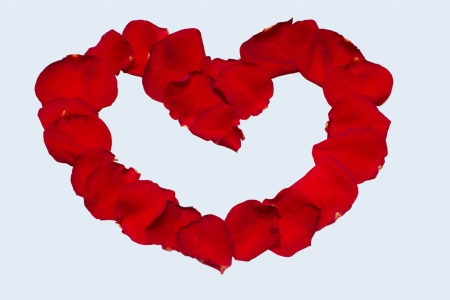 Rose petals heart Valentines Stock Photo