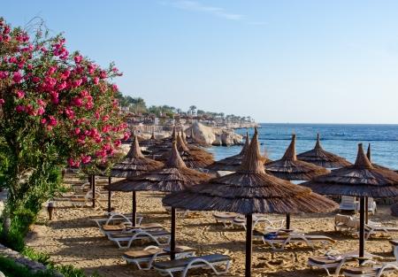 Beautiful beach on sunrise, Sharm El Sheikh Foto de archivo