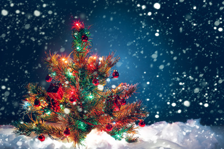 fall winter: Christmas tree with garland of lights and decorations. Christmas symbol. Stock Photo