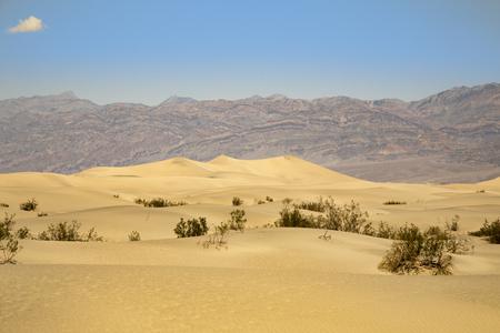 Mesquite Sand Dunes, Death Valley, California
