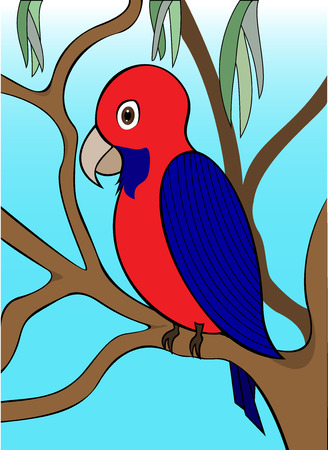 king parrot: Parrot in a Tree