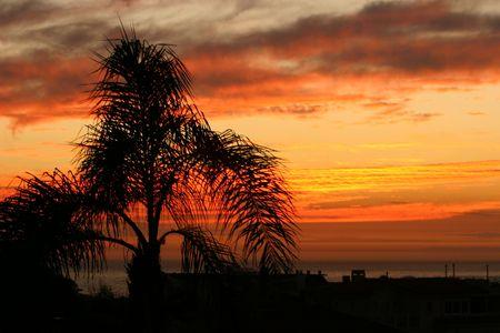 memorable: Beautiful coastal sunset