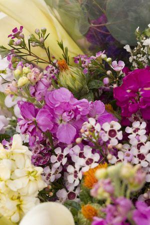 flower market: Freshly cut Spring flowers  Stock Photo