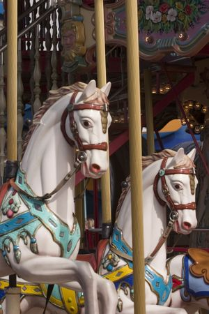 brighted painted horses at a  carousel park