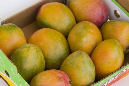 sunday market: mangoes for sale
