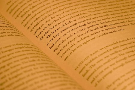 prose: Pages of a novel