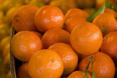 Oranges at the farmers market photo