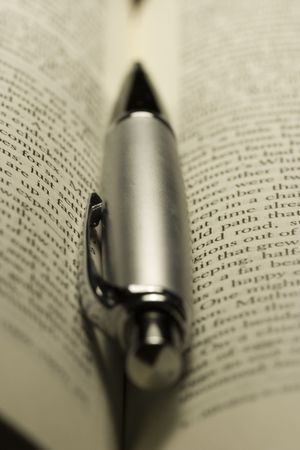 novel: Handsome pen on a novel