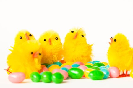 jelly beans: Easter chics and jelly beans Stock Photo