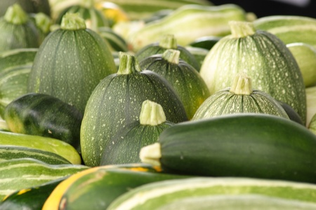 Cucumber and squashes for sale at the Sunday market photo