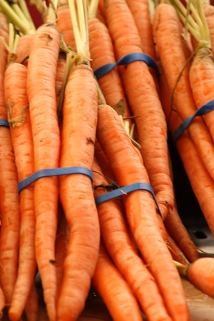farm fresh  carrots for sale photo