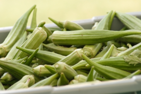 okra: Fresh okras for sale at the outdoor market Stock Photo