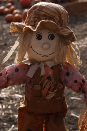 Adorable female scarecrow  photo