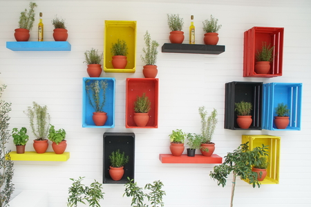 Many pots on the wall. Flowers in pots on the wall in handmade multicolored wooden crates