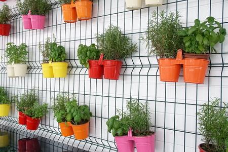 Flowers in multicolored pots hang on the wall Standard-Bild