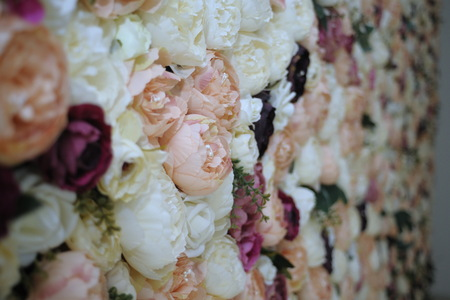 Wall with different flowers. Colorful blooming ecological landscape nature. Backgrounds, textures, wallpaper. Flowers wall background. Wedding decoration, Floral gardening background with variety of floral wall Reklamní fotografie