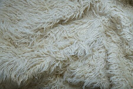 Cozy fluffy background in cream tones. White wool with white top texture background, light natural sheep wool, texture of fluffy fur, close-up fragment white wool carpet