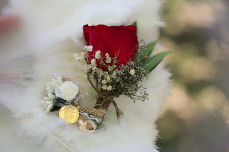 Golden coin near a small red rose on the lapel. Wedding concept. Red rose lapel on a white suit