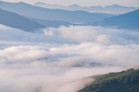 airiness: Summer mountain landscape with the sea fog