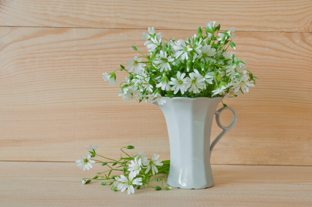 concave: Bouquet of white wild flowers of stellaria holostea in a cup on a wooden background