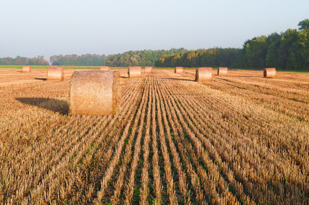 Roles of straw on the field