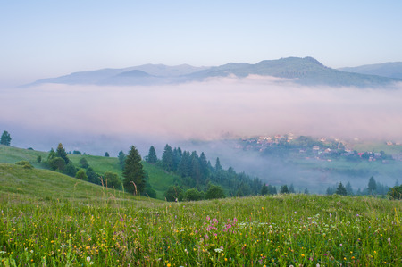 Morning fog in the mountain valley. Summer mountain landscape