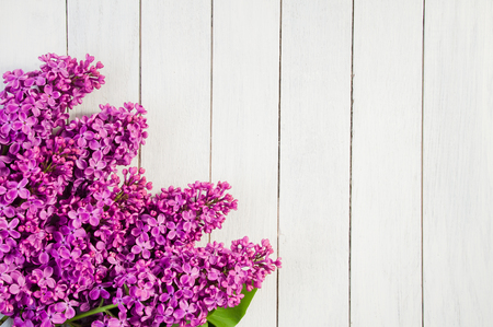 Flowers of purple lilac on a white wooden background