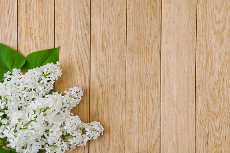 Flowers of white lilac on a wooden background Stock Photo