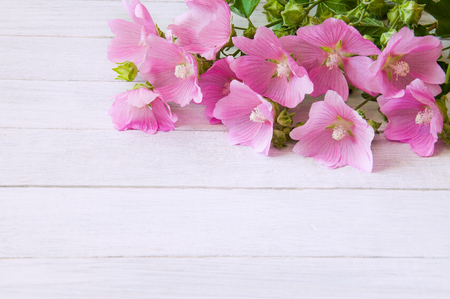 A bouquet of pink wildflowers on a white wooden table Stock Photo