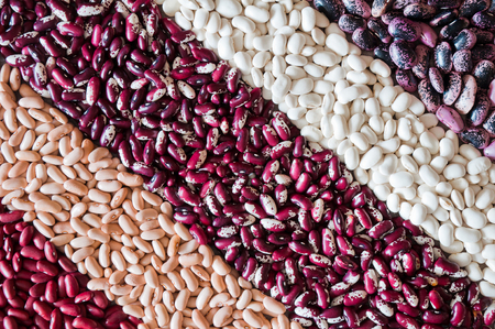 A mix of colored beans arranged by diagonal strips. Top view