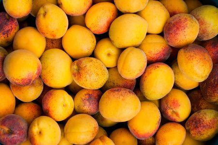 Background of fresh ripe organic apricots