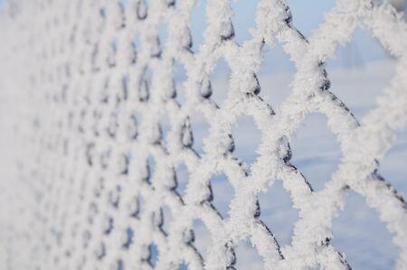 Texture of white frost on a metal mesh Фото со стока