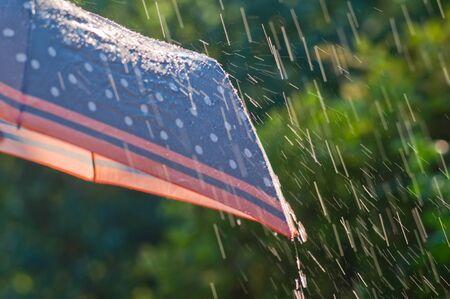 Rain drops falling on umbrella