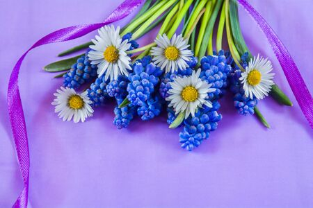 Beautiful bouquet of flowers muscari and daisies on violet background