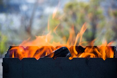 Flame. Firewood burns in the grill