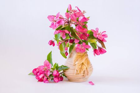 Bouquet of pink blossom apple branches in a vase on a light background. Still life