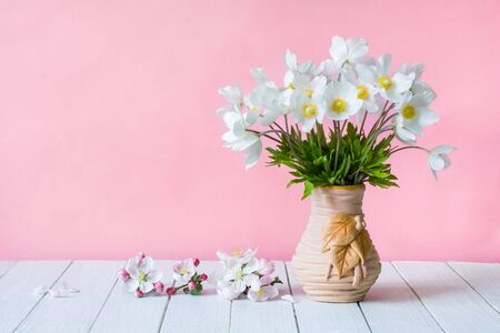 Bouquet of white wildflowers in a vase on a pink background. Anemone sylvestris