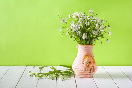 Bouquet of white wildflowers in a vase on a light green background. Stellaria holostea