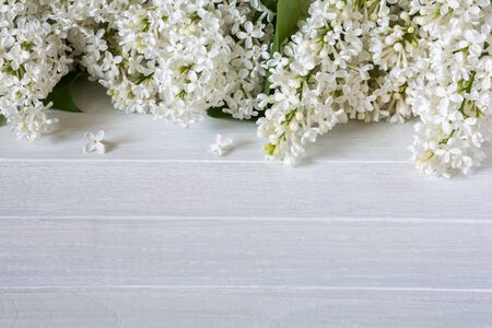 White lilac flowers on a white wooden table