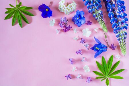 Floral arrangement of petals of different flowers on a pink background