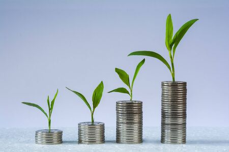Columns of coins. The concept of financial growth. Profit growth concept