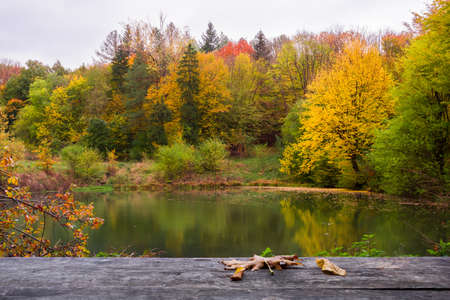 Lake in the autumn forest. Beautiful autumn landscape Stock Photo