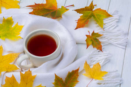 Cup of tea, warm white scarf and scattered autumn leaves on a white wooden table. Autumn concept