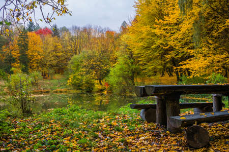 Table with a bench on the shore of a small lake in the autumn forest. Beautiful autumn landscape
