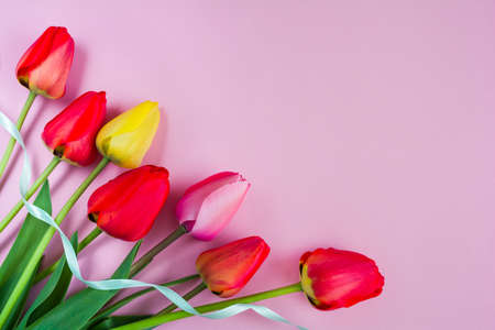 Bouquet of beautiful flowers of tulips on a pink background. Copy space