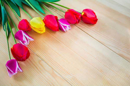 Beautiful flowers of tulips on a wooden background